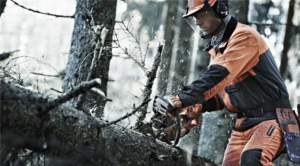 Οι 7 καλύτερες συμβουλές μας για ασφαλές και αποτελεσματικό ξεκλάρισμα δέντρων
